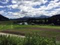 国道347_最上川沿い田園風景