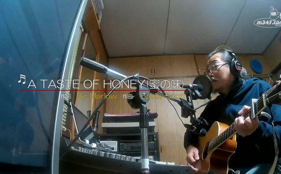 蜜の味 A TASTE OF HONEY (カバー)