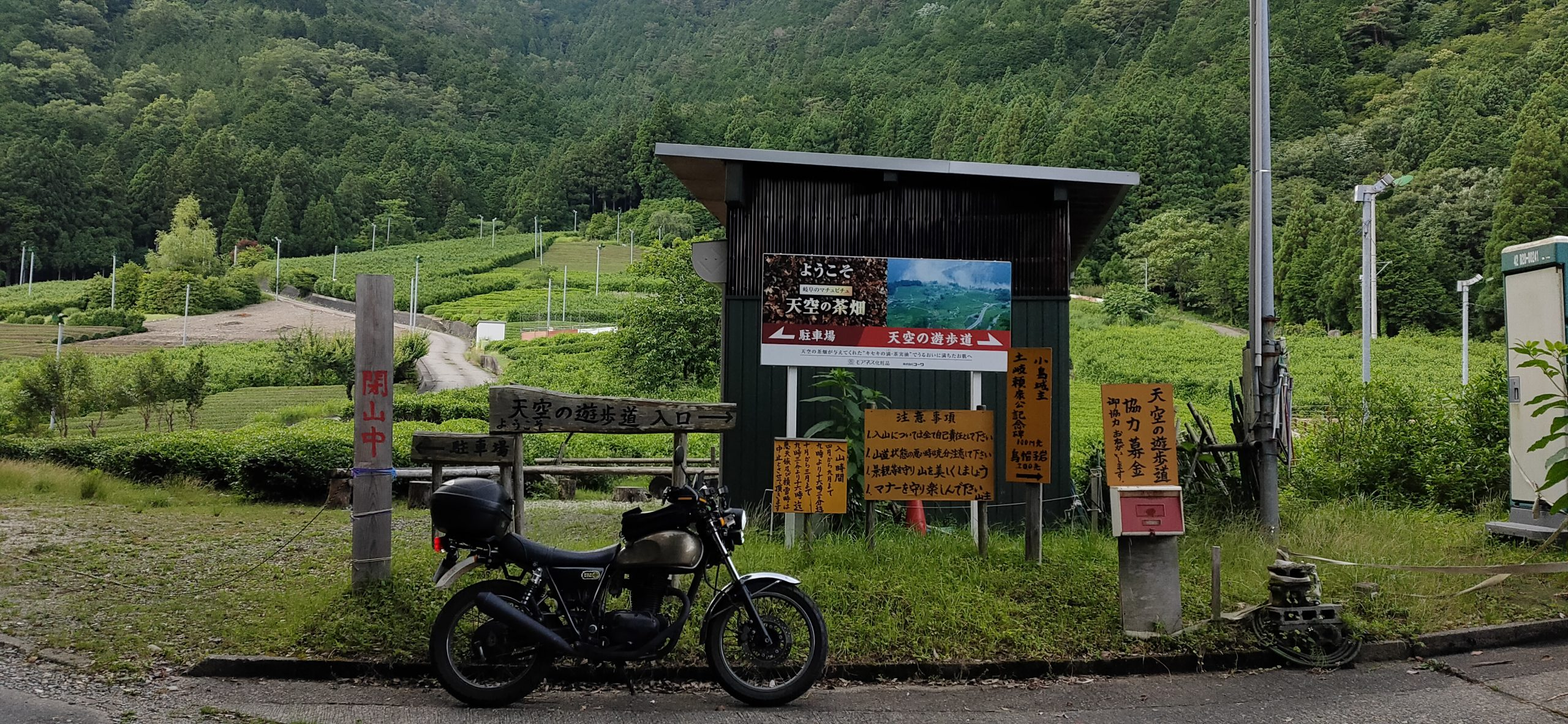岐阜のマチュピチュ 天空の茶畑